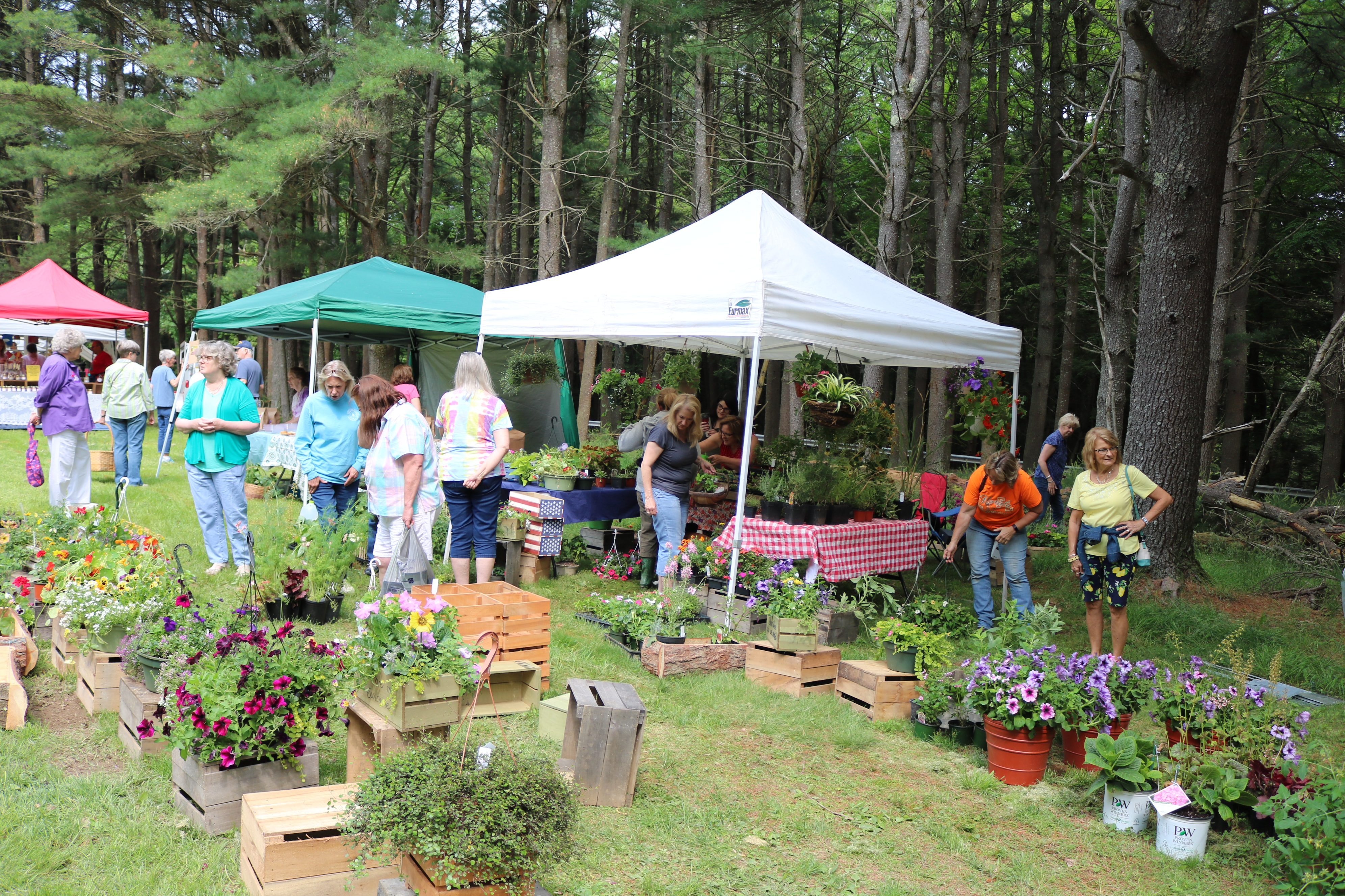 Festivals & Special Events | Cook Forest Sawmill Center for